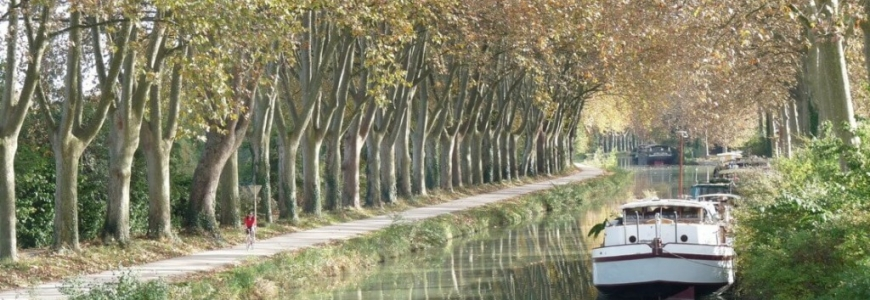 The condition of the haulage paths on the Canal du Midi