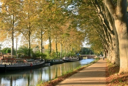 Bike itinerary and good deals on the Canal du Midi